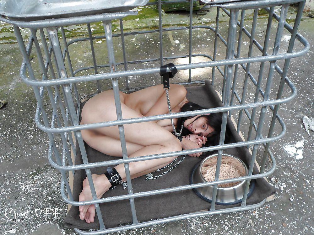 【SMエロ画像】海外は飼育も含めて調教?檻に監禁されるM美女たち(*´д`*)