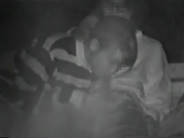 【夜の公園エロ画像】青姦スポットと呼ばれる公園を赤外線で覗いた結果ww 06