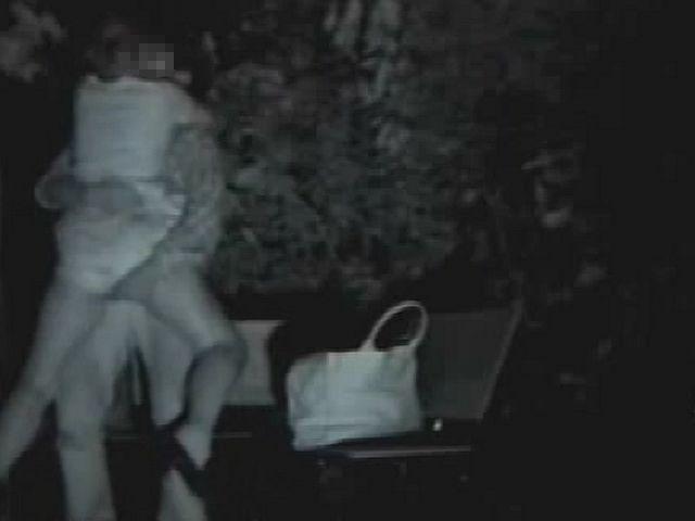 【夜の公園エロ画像】青姦スポットと呼ばれる公園を赤外線で覗いた結果ww 08