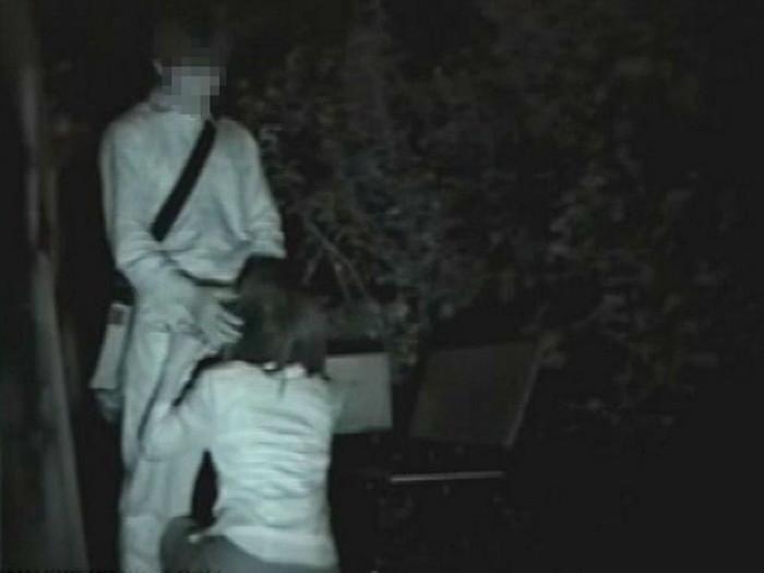 【夜の公園エロ画像】青姦スポットと呼ばれる公園を赤外線で覗いた結果ww 13
