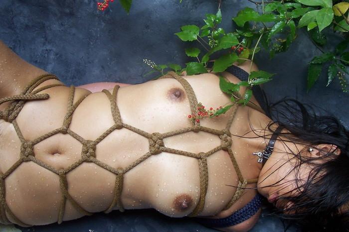 【SM緊縛エロ画像】全身をロープで縛られた自由の利かない女の子の姿に勃起したww 07